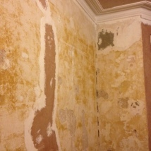 End of day one. Verdict: plastering fixable. Plan: make good all holes and re-skim